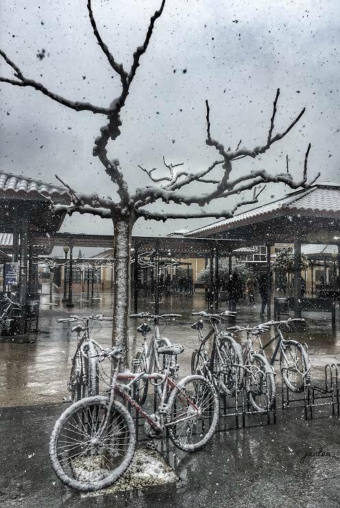 bici-nevada-con-firma