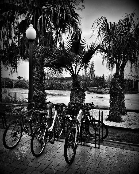 Foto blog_lluvia de verano con firma